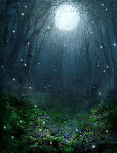 facebook fairy tales of the secret forest