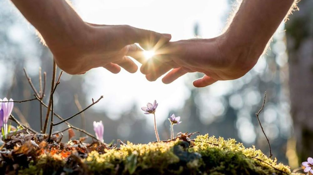 La voie sacrée de la nature